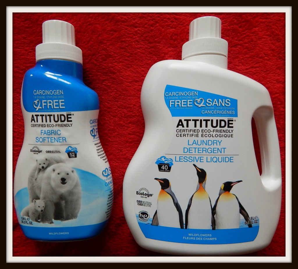 ATTITUDE Is Cleaning My Home Without The Chemicals