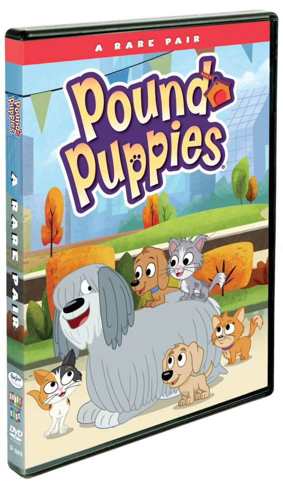 Fun-Packed Outings Starring Your Favorite Puppies!