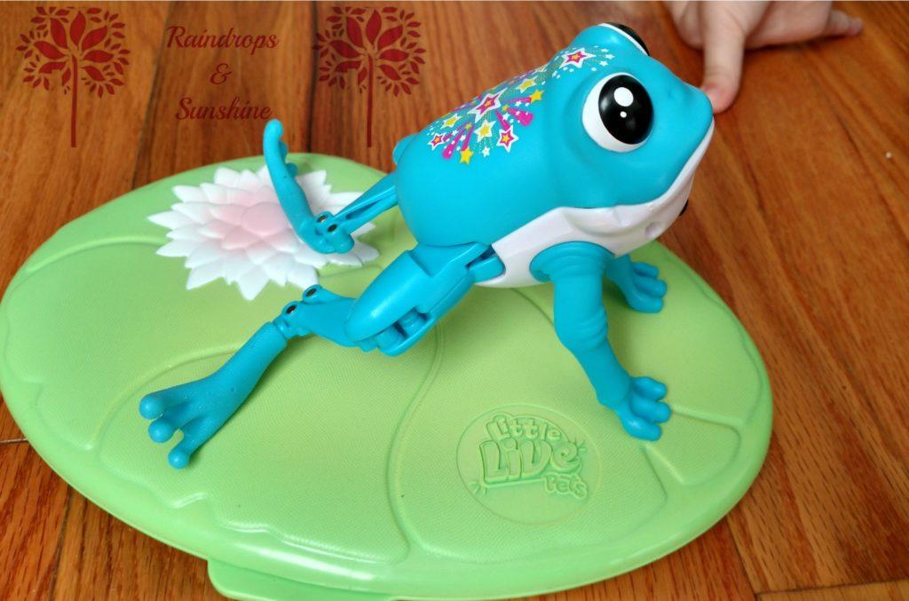 little-live-pets-frog-2
