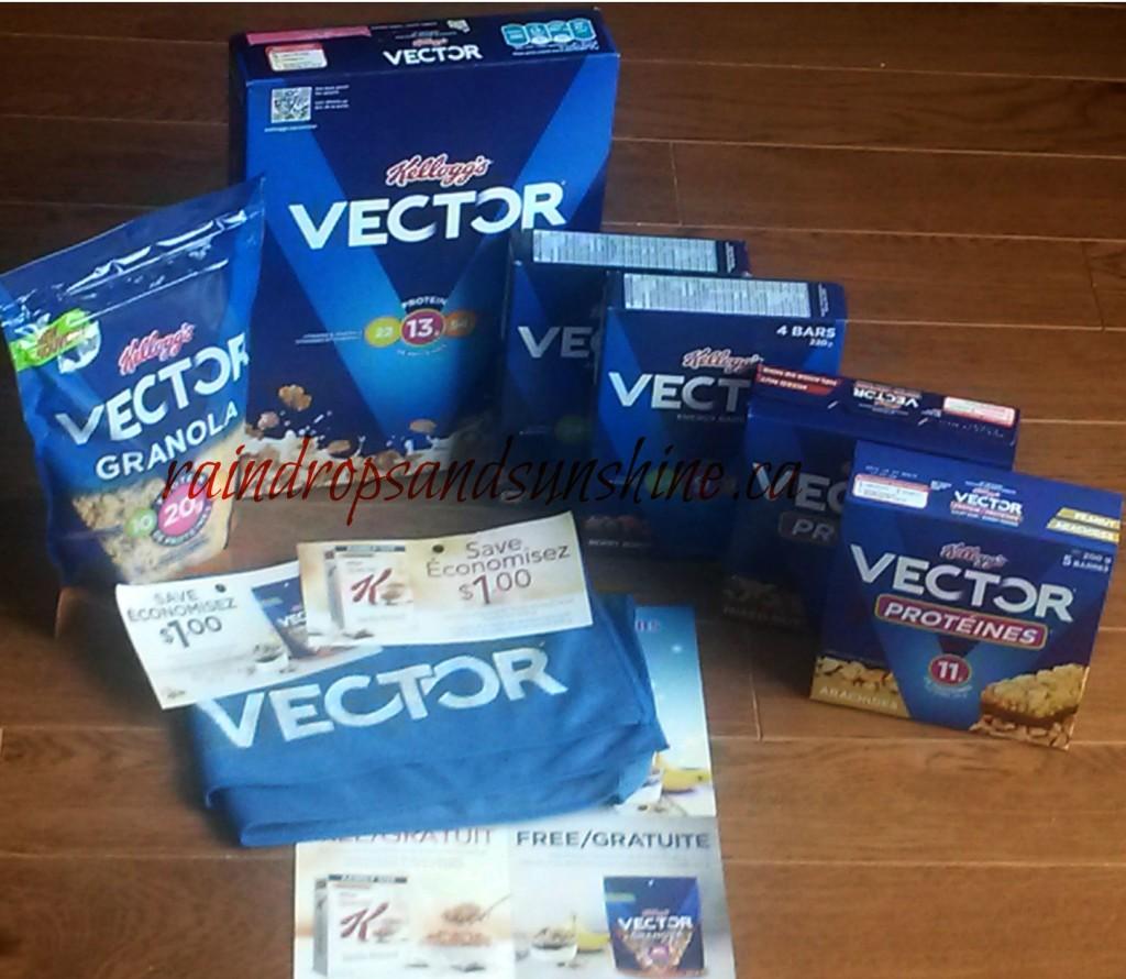 Vector22