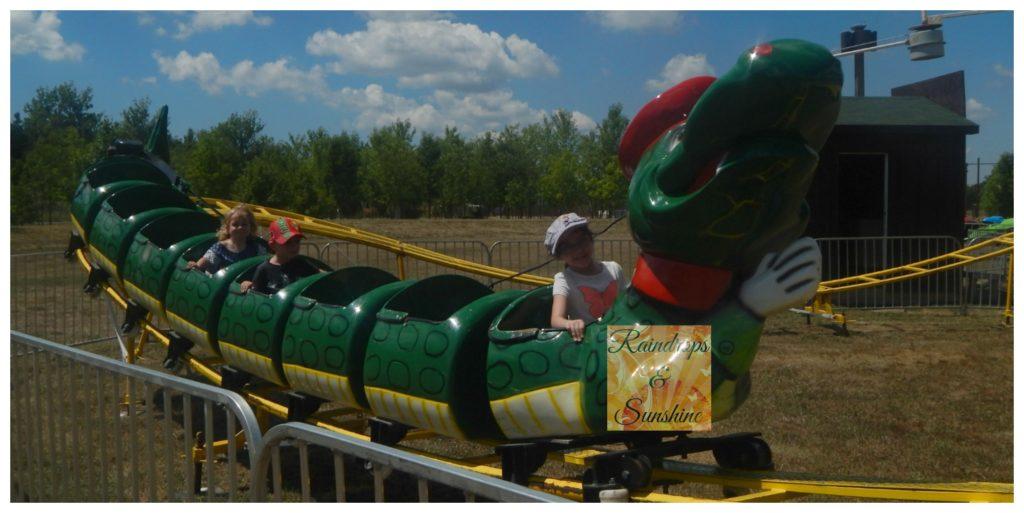 Safari Niagara Roller